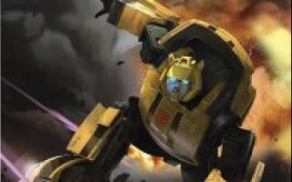Bumblebee Brave Warrior